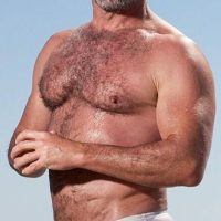 hairy belly sexy daddy model budgie smuggler speedos