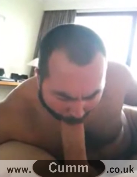Daddy Bear Cocksucker