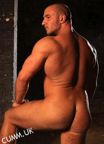rugby arse england