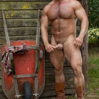 mature bears outdoors